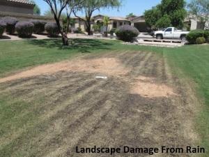 2 - Landscape Damange